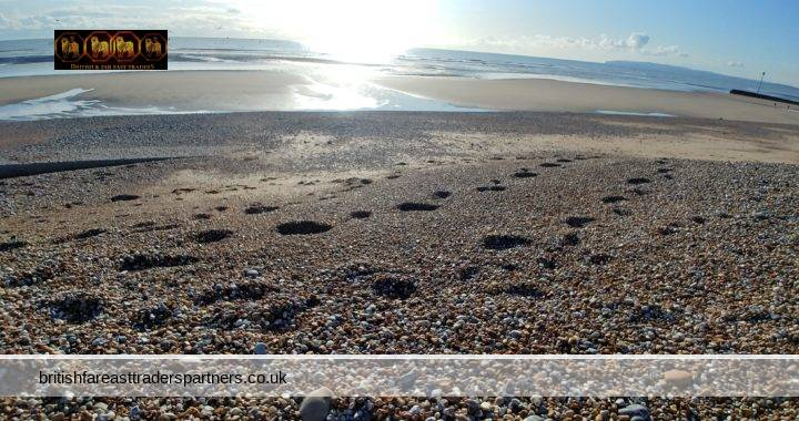 EXPLORING THE BEAUTIFUL RYE & CAMBER IN EAST SUSSEX, ENGLAND