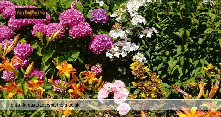 ENGLAND IN BLOOM: A CELEBRATION OF THE FLORAL BEAUTIES FOUND IN THE UNITED KINGDOM