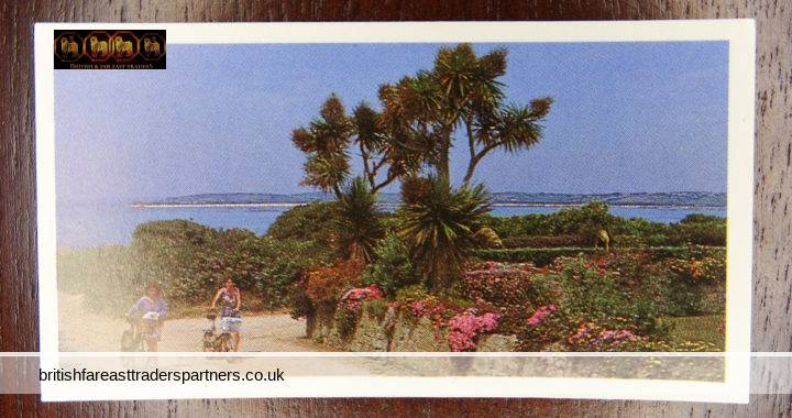 DISCOVERING OUR COAST: THE ISLES OF SCILLY : BROOKE BOND OXO LTD CARD 34 OF 50