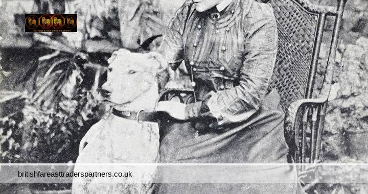 VINTAGE Miss Eva MOORE English ACTRESS & Suffragette + Her Dog Collectable Fashion & Beauty Social History Women's Suffrage YES or NO Series POSTCARD