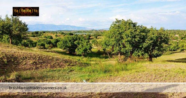 A GLIMPSE OF THE COUNTRYSIDE: TALUGTUG, NUEVA ECIJA, PHILIPPINES
