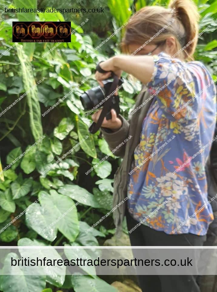 hazel at kew gardens