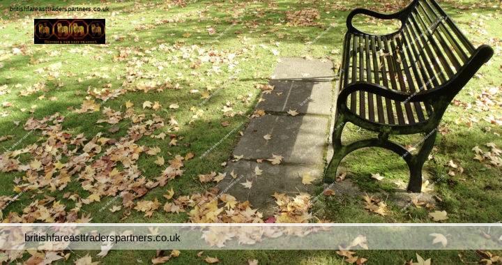 SUNNY AUTUMN MORNING WALK IN THE PARK: ENGLAND 2020