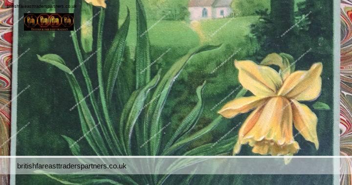ANTIQUE 1902 Happy New Year GREETINGS Herzlichen Gluckwunsch  zum neven Jahre Church Daffodil Nature NUENBERG GERMANY Embossed Postcard